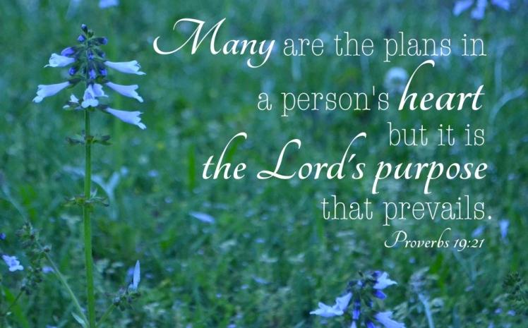 proverbs-19-21-1024x683